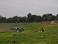 Along the Dniester River (15106269406).jpg