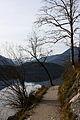 Altausseer See 78931 2014-11-15.JPG