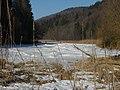 Altwasser zugefroren - panoramio.jpg