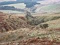 An unnamed sike - geograph.org.uk - 636278.jpg