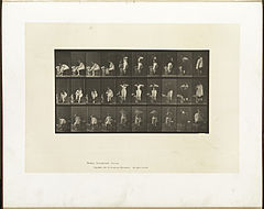 Animal locomotion. Plate 494 (Boston Public Library).jpg