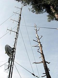 Collinear antenna array
