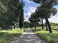Appia Antica way.jpg