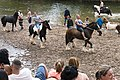 Appleby Horse Fair (8990093801).jpg