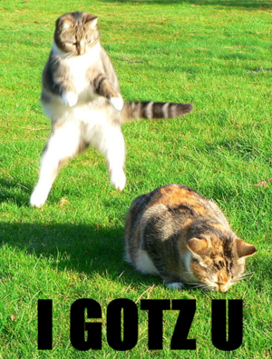I haz April Foolz lolcats. Intended for use on...