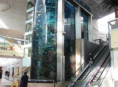 instalacin en un centro comercial de kaunas lituania los acuarios son un buen elemento decorativo y