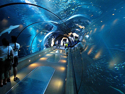 Oceanarium at the Oregon Coast Aquarium Aquarium tunnel.jpg