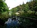 Arboretet - panoramio (3).jpg