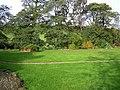 Ardee Townland - geograph.org.uk - 1018051.jpg