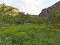 Arpa canyon Emma YSU (2).jpg