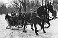 Arreslee door twee paarden getrokken, Bestanddeelnr 924-3327.jpg