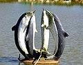 Art - Dolphins, Bangabandhu Sheikh Mujib Safari Park.jpg