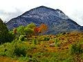 Autumn Colours - panoramio (2).jpg