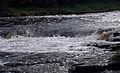 Aysgarth Falls MMB 43.jpg