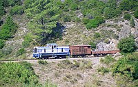 BB-405 Vivario-b.jpg