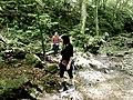Badelgraben im Sommer.jpg