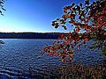 Badin Lake viewed from Uwharrie National Forest.JPG