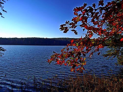 Yadkin river wikivisually for Badin lake fishing
