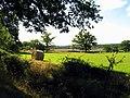 Bales on Farmland near Curridge - geograph.org.uk - 35372.jpg