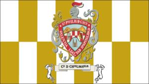 Municipal president of Chihuahua - Image: Bandera del Municipio de Chihuahua 2006 Presente