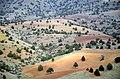 Barandagh - Nature of Agh Dagh - panoramio.jpg
