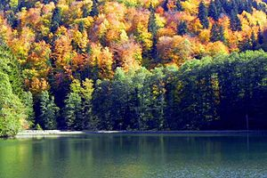 Bateti Lake - Image: Bateti lake in fall 1