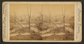 Baxter Park, Louisville, Kentucky, from Robert N. Dennis collection of stereoscopic views.png