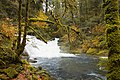 Beaver Creek Falls Waterfalls, Oregon (32589825641).jpg