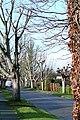 Beechwood Avenue - geograph.org.uk - 1150437.jpg