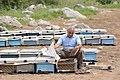 Beekeeper in Pendro.jpg