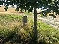 Beim Kälberberg - panoramio (86).jpg