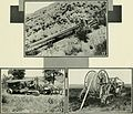 Bell telephone magazine (1922) (14569833548).jpg