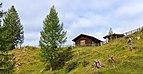 Bergtocht van Tschiertschen (1350 meter) via Runcaspinas naar Alp Farur (1940 meter) 08.jpg