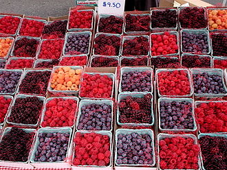 Phytochemical - Red, blue, and purple colors of berries derive mainly from polyphenol phytochemicals called anthocyanins