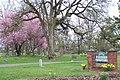 Bethany Pioneer Cemetery (3716193340).jpg