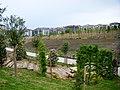Beylikdüzü Yeşil Vadi-Yaşam Vadisi Botanik Şehir Parkı Çalışmaları Devam Ediyor, Nisan 2014 - panoramio.jpg