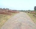 Bhangarh fort Alwar Rajasthan 10.jpg