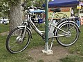 Bicycle Herb Electric 389.jpg