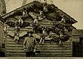Bird lore (1909) (14752491521).jpg