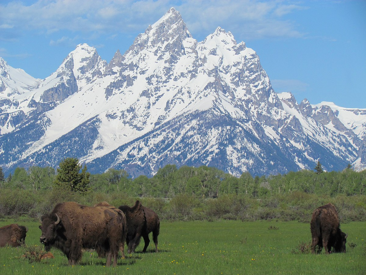 Grand Teton National Park - Wikipedia