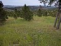 Black Hills looking toward Custer State Park 01.jpg