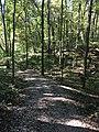 Blendon Woods Metro Park October 2018 22.jpg