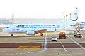 Blue Panorama, I-BPAM, Boeing 737-3Y0 (16455704142).jpg