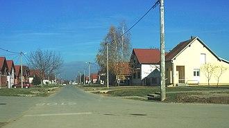 Bogdanovci - Image: Bogdanovci ulica Matije Gupca