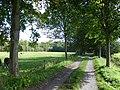 Bornem Barelstraat Jonge Lindendreef (2) - 230200 - onroerenderfgoed.jpg