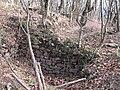 Borovets-fortress-near-Pravets-1.jpg