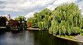 Boston Public Garden, Boston, Massachusetts.JPG