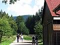 Boubín - panoramio.jpg