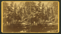 Boulder Creek, Colorado, from Robert N. Dennis collection of stereoscopic views.png
