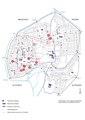 Braunschweig Kemenatenkartierung Rekonstruktion Stadtgrundriss 13 Jh E.Arnhold BS.pdf